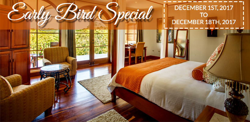 Early Bird Special – 20% discount