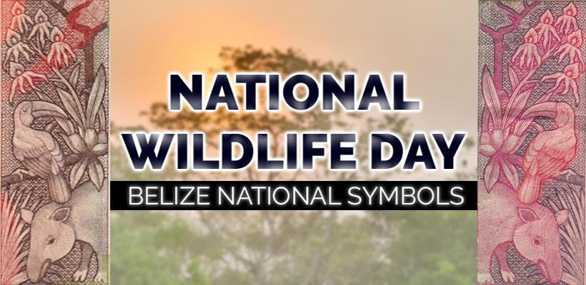 National Wildlife Day Belize National Symbols