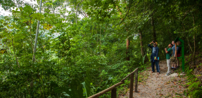 belize fall vacations